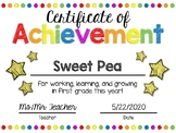 EDITABLE First Grade End of the Year Certificate of Achievement Award-Rainbow