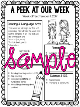EDITABLE Newsletters {FREE SAMPLE!}