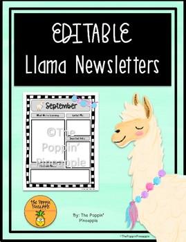 EDITABLE Newsletters in Llama Theme