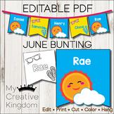 EDITABLE PDF June Bunting