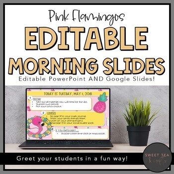 EDITABLE Pink Flamingo Morning and Task PowerPoint Slides