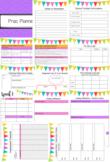 EDITABLE Prac / Internship Planner for Uni Students