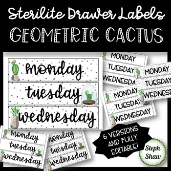 EDITABLE - Sterilite Drawer Labels - GEOMETRIC CACTUS THEME