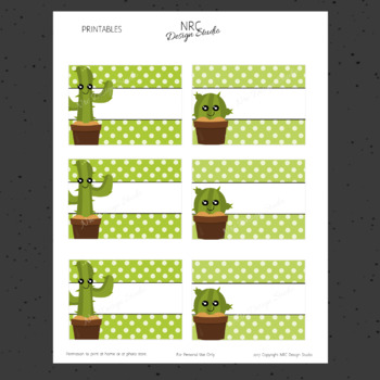 EDITABLE Tags, Cactus Labels, Name Tags - Classroom Decoration