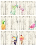 EDITABLE Tropical Themed Library Labels