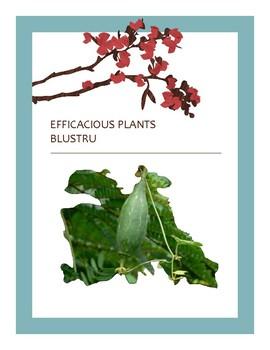 EFFICACIOUS PLANTS 1