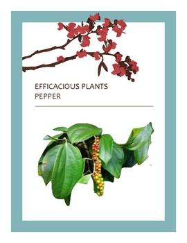 EFFICACIOUS PLANTS 12