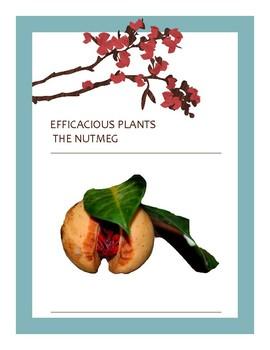 EFFICACIOUS PLANTS 16