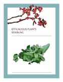 EFFICACIOUS PLANTS 23