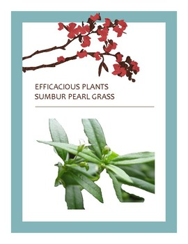 EFFICACIOUS PLANTS 28