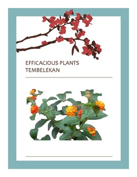 EFFICACIOUS PLANTS 32