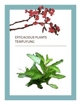 EFFICACIOUS PLANTS 33