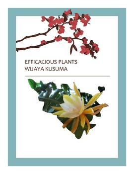 EFFICACIOUS PLANTS 39