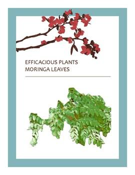 EFFICACIOUS PLANTS 6