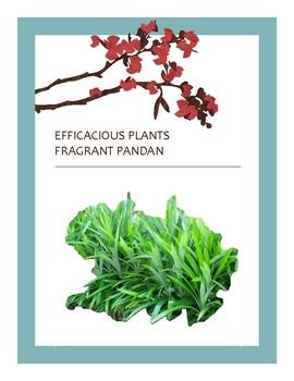 EFFICACIOUS PLANTS 7