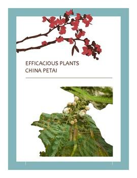 EFFICACIOUS PLANTS IV