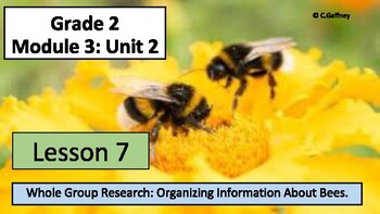EL 2nd Grade - Module 3, Unit 2 - Lesson 7 - Organizing Information About Bees