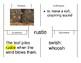 EL EDUCATION 1st grade Skill Blk Mod 2 Cycles 5-11 pocket chart vocabulary cards