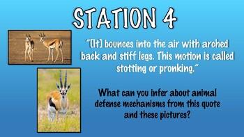 EL Education Curriculum Grade 4 Module 2 Unit 1 Lesson 1 - Poster Walk