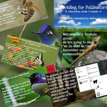 EL Education Grade 2: Module #4: Providing for Pollinators!
