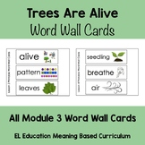 EL Kindergarten Module 3 Trees Are Alive Word Wall Cards
