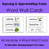 EL Kindergarten Module 4 Trees Are Important Word Wall Cards