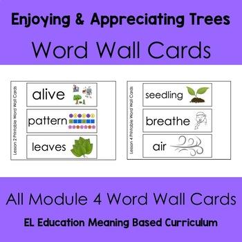EL Kindergarten Module 4 Trees Are Important Word Wall Cards