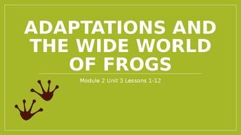 EL Reading Grade 3 Module 2 Unit 3 Lessons 1-12 Bundle