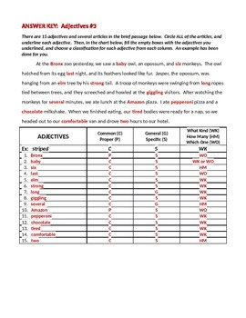 ELA ADJECTIVES Common/Proper, Specific/General, & Articles Worksheet #3