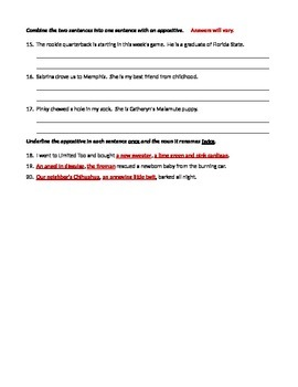 ELA COMMAS With Appositives Test / Formative Assessment