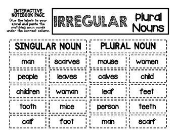ELA - Irregular Plural Nouns - Mini Lesson