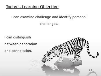 ELA Springboard Level 3 Unit 1 Daily Objectives