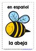 ELEMENTARY SPANISH - ANIMALS (1) - 20 DISPLAY & DESIGN POS