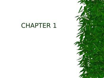Animal Farm ELL/ESL chapter by chapter breakdown (power point)