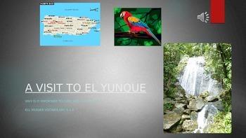 A Visit to El Yunque  6.1.4