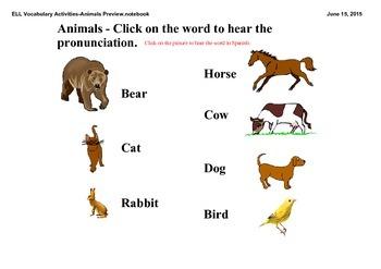 ELL Vocabulary Activities - Animals