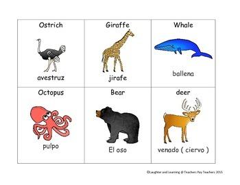 ESL Vocabulary Cards - Animals