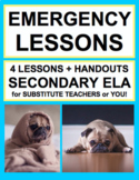 Emergency Sub Lesson Plans for Substitute English Teacher | Printable & Digital