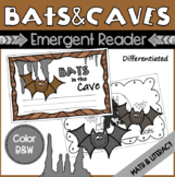 EMERGENT READER - Counting Bats 0-10