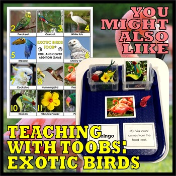 Animal Classes for PK-1: BEAUTIFUL BIRDS (Cut-and-Glue Science)