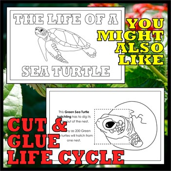 Animal Classes for PK-1: REMARKABLE REPTILES (Cut-and-Glue Science)