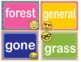 EMOJI Fry Sixth 6th 100 Sight Words Flash Cards, Letters and Numbers