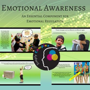 EMOTION AWARENESS SKILLS; EMOTIONAL REGULATION