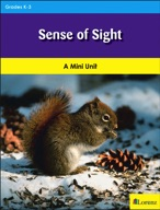 Sense of Sight