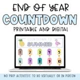 10 Day END OF YEAR Countdown   Digital Printable No Prep Worksheets & Activities
