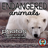 Photos Photographs ENDANGERED ANIMALS Personal and Commercial Use