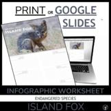 ENDANGERED SPECIES | ENDANGERED ANIMALS | THE ISLAND FOX | GOOGLE SLIDES