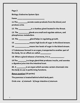 ENDOCRINE SYSTEM: A BIOLOGY QUIZ