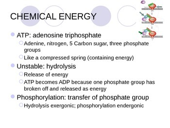 ENERGY AND METABOLISMMEMBRANES