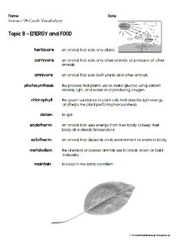 ENERGY and FOOD Topic 8 5th Grade